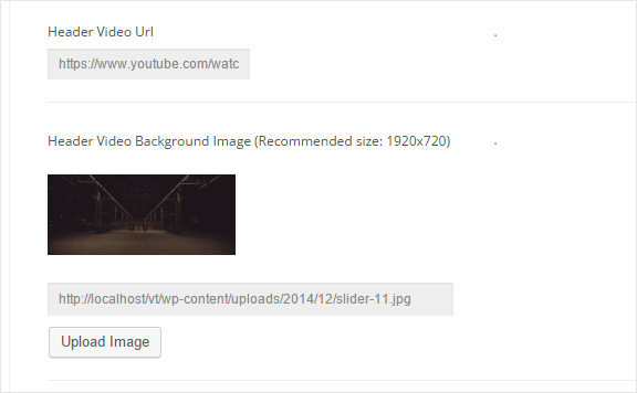 Homepage Options Video Header